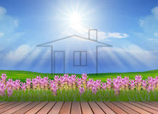 New home on green field Royalty Free Stock Photography