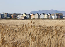 New homes in housing development. Royalty Free Stock Images