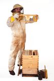 New Honeycomb Stock Photos