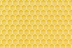 New honeycomb foundation. Close up of angled new honeycomb foundation with blur. Plastic foundation with light coating of beeswax Stock Photos