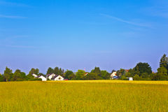New housing area near the meadow in beautiful landscape Stock Photo