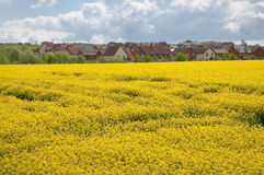 New housing estate in Suffolk UK Stock Photo