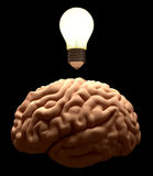 New idea. Brain light bulb concept. Bright light on brain. Isolated on black background. Idea concept Stock Photos