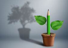 New idea creative concept, green pencil growing from pot. New idea creative concept, pencil growing from pot stock photography