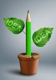 New ideas creativity concept, pencil with leaves as stem Stock Image