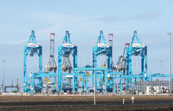 New industrial cranes in the europoort Stock Photos