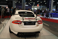 New jag sports car rear Stock Image