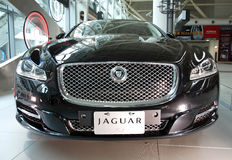 New Jaguar Model Sedan XJ Royalty Free Stock Photos