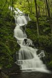 New Jerset Forest Waterfall Stock Images