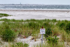 New Jersey Beach Bird Temporary Nesting Protected Conservation Area refuge. A roped off protected conservation area of a New Jersey beach for endangered nesting stock photos