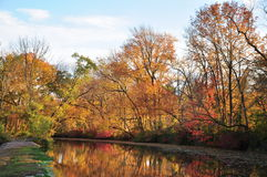 New Jersey canal trail in autumn leaves foliage. Foliage, autumn, colors, water, reflection, trail, floating, leaves, trees, trunks,  Delaware & raritan canal Stock Image