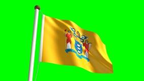 New Jersey flag. (seamless & green screen stock video