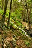New Jersey Forest Waterfall Stock Photos