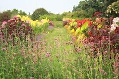 New-Jersey Gartenakzentrand-Fotoshop stockbild