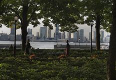 New Jersey sky line from Manhattan. Hudson river trees and other greenery in the foreground Royalty Free Stock Image
