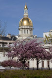 New Jersey State Capitol Building in Trenton Royalty Free Stock Photo