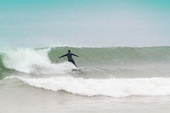 New Jersey Surfers Stock Image