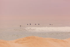 New Jersey Surfers Royalty Free Stock Images