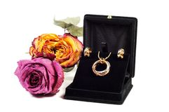 New jewelry set Royalty Free Stock Images