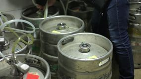 New a keg with fresh beer stock video