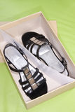New Ladies Shoes. A pair of new ladies sandals in their box Royalty Free Stock Photography