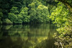 New Lanark in Scotland with forest and river Clyde. United Kingdom Royalty Free Stock Images