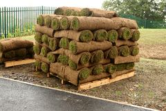 New Lawn?. Pallet of lawn turfs, ready to make a new lawn royalty free stock photo