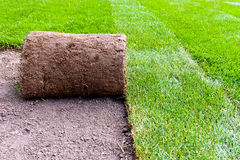 New lawn roll Stock Photography