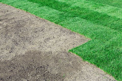 New lawn Stock Photography