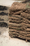 New lawn sod ready for new yard stock images