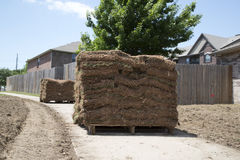 New lawn sod. A new lawn sod in the yard of house background stock photography