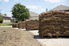 New lawn sod in the yard Royalty Free Stock Photo