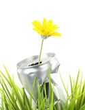 New life. Aluminum can with growing daisy flower on the green grass royalty free stock images