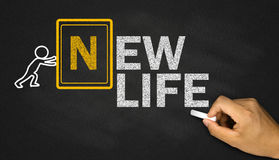 New life concept Stock Photography