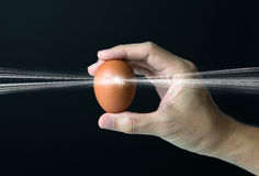 New life. Concept with hand holding a cracked egg stock image