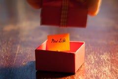 New life stock image