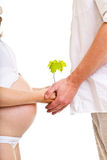 New life concept pregnant couple with plant Royalty Free Stock Photo