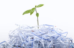 New Life concept with recycle Royalty Free Stock Photo