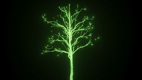 A new life in the form of a growing tree of electrical discharges. In 4K ultra HD