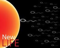 New life. Illustration about new life concept: many sperm go to the female egg to be fertilized vector illustration
