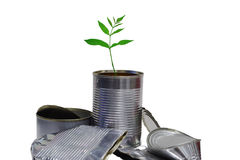 New life from old rubbish. A young plant growing from a pile of tin cans royalty free stock image