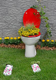 New life for old toilet bowl Royalty Free Stock Photos