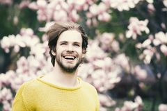New life and optimism. Happy man smiling in park with blossoming trees. Flourishing and growth. Spring season concept. Caucasian guy with beard in yellow stock photo