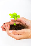 New life- saving planet Stock Photo