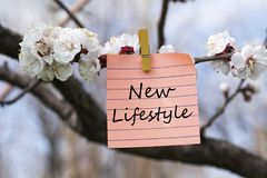 New lifestyle in memo. Pined on tree with blooms Stock Image
