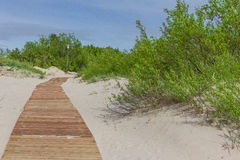 New light brown planks boardwalk in white sand dunes. New light brown planks boardwalk in white sand dunes of Baltic sea Royalty Free Stock Images