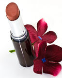 New lipstick and crimson flowers Royalty Free Stock Photos