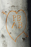 New Love. A couples new initials carved into a tree after being married Royalty Free Stock Images