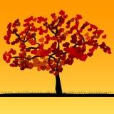New love tree Stock Photo