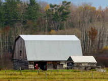 New metal roof on an old barn Royalty Free Stock Image
